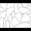 Poppy Trio - Reusable Pattern (6 pack) SPO