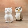 KIDS OWL PARTY ANIMAL/8 SPO