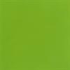 GREEN GLOSS - Pint