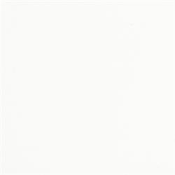WHITE GLOSS - Pint