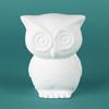 BANKS RETRO OWL BANK /6 SPO