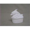KIDS Dolphin Box/6 SPO